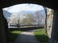 Wachau region