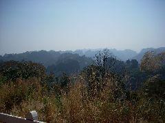Laos jungle